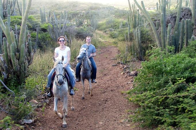 Aruba Horses